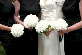 white hydrangea bouquet white hydrangea bouquet wedding idea oosile