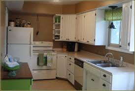 Spray Painting Kitchen Cabinet Doors Mahogany Wood Light Grey Raised Door Spray Paint Kitchen Cabinets