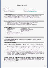literary essay outline graphic organizer cv examples for dubai cv
