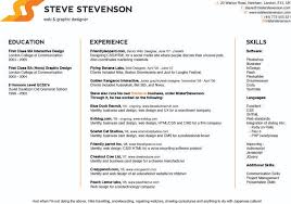 Best Personal Resume Websites by Resume Websites Examples
