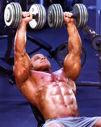 incline barbell dumbbell presses 1 movement 20 points of view