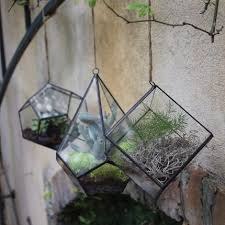 hanging terrariums u2013 46 u0026 spruce home and garden