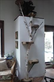 How To Make End Tables Out Of Tree Stumps by Best 25 Tree Furniture Ideas On Pinterest Tree Stump Furniture