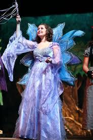 fairy grandmother best 25 fairy godmother costume ideas on diy tutu