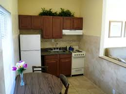 Great Small Kitchen Designs Efficiency Kitchens