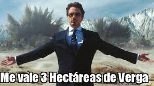 Memes De Me Vale - meme creator me vale 3 hect磧reas de verga meme generator at