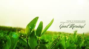 download good morning fresh wallpaper gallery