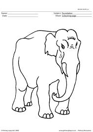 primaryleap uk elephant colouring worksheet