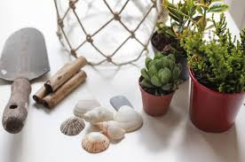 green fingers easy indoor mini garden inspiration from our blog