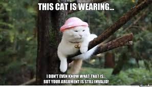Your Argument Is Invalid Meme - your argument is invalid by trinsualt meme center