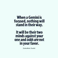 Gemini Meme - 12 best sassy gemini memes images on pinterest gemini quotes