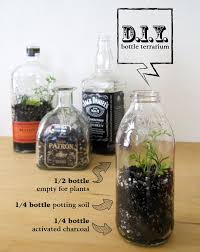 403 best garden terrarium images on pinterest gardening plants
