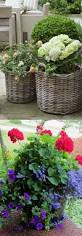 plant beautiful colorful outdoor planters 24 colorful outdoor