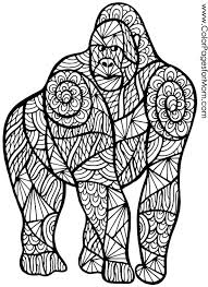 ape gorilla coloring colouring animals zentangles