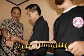 Serum Ular berbagi di dunia serum ular