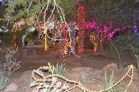 Zoo Lights Phoenix Arizona by The Hoernke Family