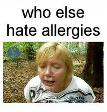 who else hate allergies dank meme on me me