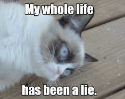 Funny Angry Memes - funny angry grumpy cat memes collection for friends family