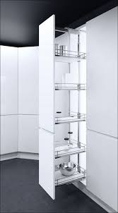 Pull Out Cabinets Kitchen Pantry Kitchen Pantry Closet Pull Out Shelves For Kitchen Cabinets Ikea