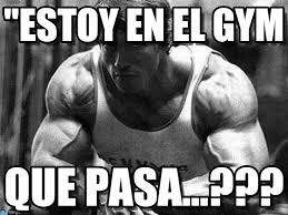 Memes De Gym En Espa Ol - estoy en el gym arnold fitness meme en memegen