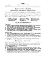 Vp Resume Examples by Executive Resume Templates Word Free Resume Example And Writing