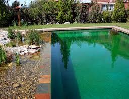 Natural Pools by Natural Swimming Pool Design Natural Pools Or Swimming Ponds Nifty