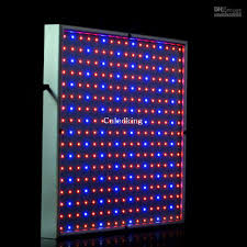 red and blue led grow lights new 20w led grow light 225 leds red 660nm blue 420 nm for flowering