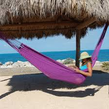 caribbean mayan hammock purple