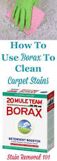 how to clean use borax to clean carpet and remove carpet stains