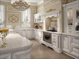 Kitchen Cabinets Brands Kitchen 2017 Kitchen Backsplash Trends Kitchen Appliance Trends