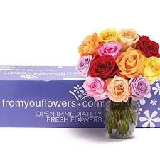 Free Vase You Flowers One Dozen Rainbow Roses Free Vase Included