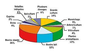chambre agriculture auvergne manger mieux chambre agriculture puy de dome bizoko com