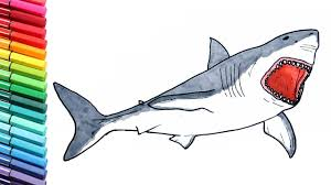 shark drawing coloring pages children megalodon dinosaur