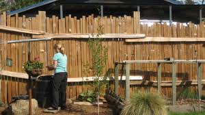 best privacy fence ideas for backyard