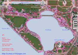Map Of Downtown Washington Dc by Washington Dc Cherry Blossom Guide Dcpages Com