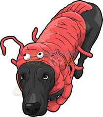 lobster costume a dog wearing a lobster costume clipart vector