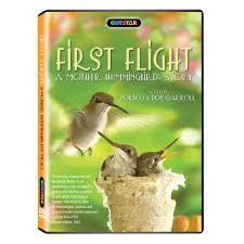 first flight a mother hummingbird u0027s story dvd shop pbs org