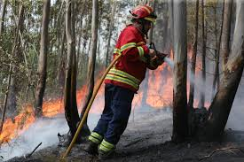 Wildfire Woodland Hills Ca by Reeling From Its Deadliest Forest Fire Portugal Finds A Villain