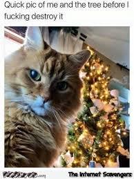 Christmas Tree Meme - cat christmas tree meme great printable calendars