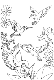 hummingbird coloring pages on flower coloring pages 21497