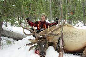 Bears Montana Hunting And Fishing - montana elk hunting montana mule deer hunting montana black bear