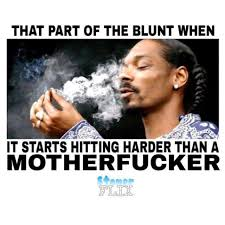 the funniest marijuana memes for this week