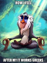 It Works Memes - how i feel after my it works greens rafiki meditating lion king