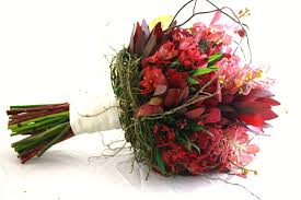 australian native plant names australian native bouquet flowers of sydney
