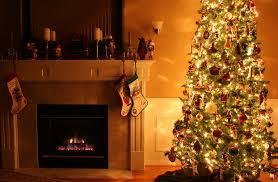 aa christmas trees brooklyn ny