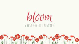 Desk Top Design Floral Desktop Wallpaper Templates Canva