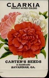 flower seed packets vintage botanical graphics vintage flower seed packets