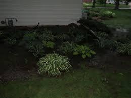 rain garden simplicitysoil