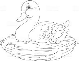 duck coloring page stock vector art 621118644 istock