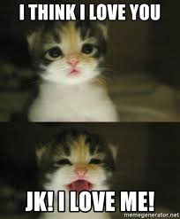 I Think I Love You Meme - i think i love you jk i love me adorable kitten meme generator